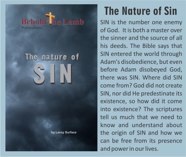 The Nature of SIn